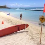 ハワイのクラゲ注意報